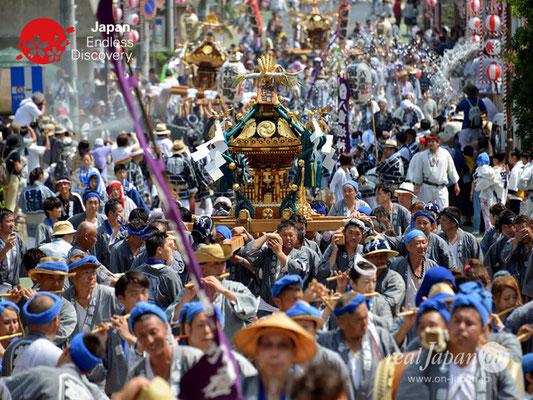 〈八重垣神社祇園祭〉神輿連合渡御:横町区 @2018.08.05 YEGK18_023