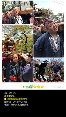 眞正會さん:相模原市民桜まつり, 2018年4月8日, 神奈川県相模原市