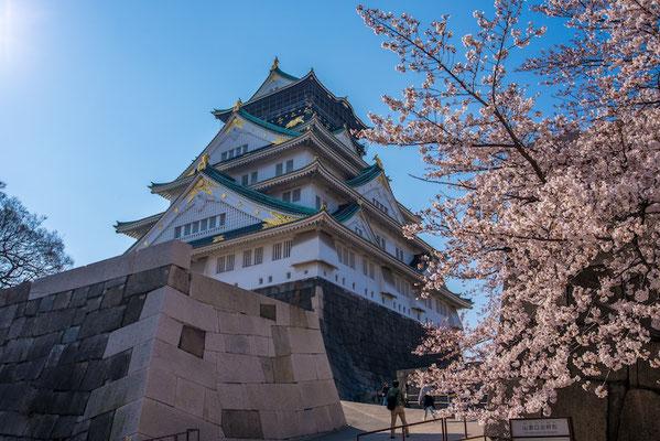 〈s20-109〉ぽせいどんさん:大阪、春の陣/2019年4月4日(木)/大阪城