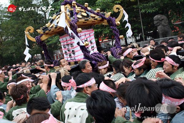 〈三社祭〉二之宮神輿・西部氏子宮出し渡御 @2012.05.20