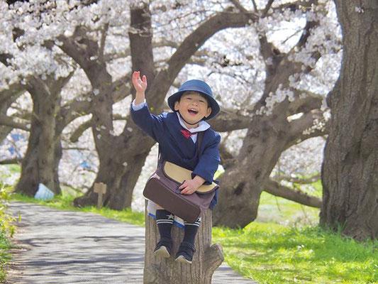<s20-088>shiho530さん:花咲み(❁´ω`❁)/4月6日(月)/鯖江市