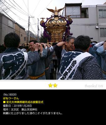 ばねつーさん:宮元大神輿修繕完成お披露目式, 2018年1月28日, 駒込天祖神社