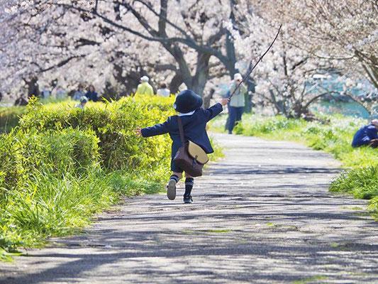 <s20-076>shiho530さん:こんにちは卯月さん/4月2日(木)/鯖江市