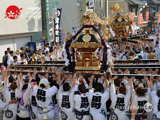 〈八重垣神社祇園祭〉神輿連合渡御:田町区 @2018.08.05 YEGK18_036