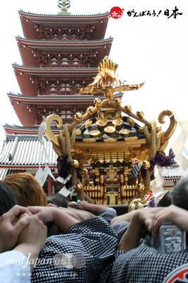 〈三社祭〉各町連合渡御 @2010.05.15