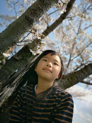 <s20-159>うしさん:いい天気だな/4月5日(日)/泉南市