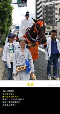 てっぽうさん:白鬚神社例大祭, 2019年6月9日,東京都墨田区