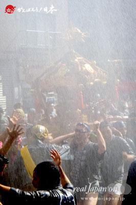 〈深川神明宮例大祭〉神輿連合渡御 十三番: 千歳三丁目 @2012.08.19