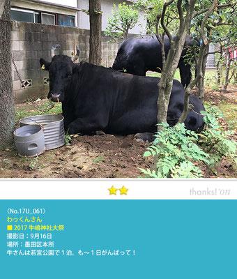 わっくんさん:牛嶋神社大祭, 墨田区本所, 2017年9月16日