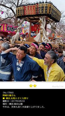 岡崎行雄さん:横浜 大岡川 さくら祭り, 2017年4月2日