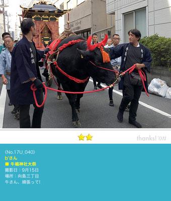 b'さん:牛嶋神社大祭, 向島三丁目, 9月15日