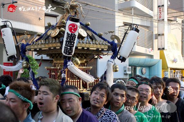 浦安三社祭〈七区 猫四睦〉@2012.06.17