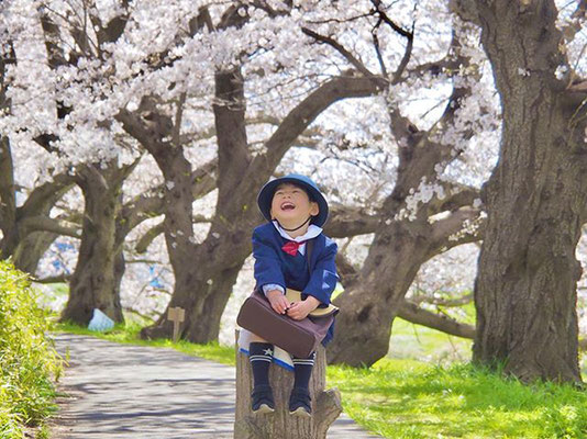 <s20-085>shiho530さん:花咲み(❁´ω`❁)/4月6日(月)/鯖江市