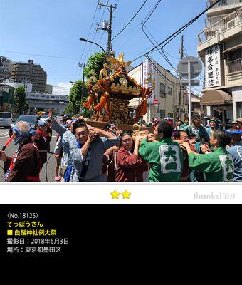てっぽうさん:白鬚神社例大祭, 2018年6月3日, 東京都墨田区