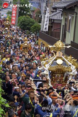 浦安三社祭〈当代島・連合渡御〉先頭:稲荷神社本社神輿 @2012.06.17