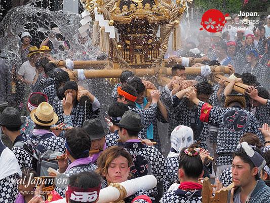〈八重垣神社祇園祭〉萬町区 @2017.08.05 YEGK17_036
