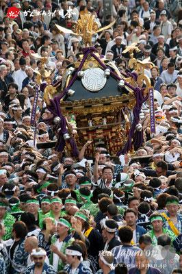 〈下谷祭〉本社大神輿渡御 @2010.05.09   写真ナンバー【sty-001】