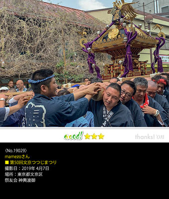 mamezoさん:第50回文京つつじまつり,神輿渡御,2019年4月7日,根津神社
