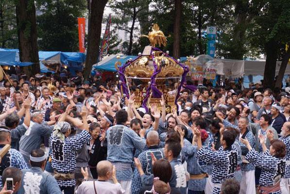 北澤八幡神社例大祭_011 ©北澤八幡秋祭り実行委員会