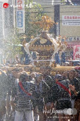 〈深川神明宮例大祭〉神輿連合渡御 十二番: 新大橋二丁目 @2012.08.19