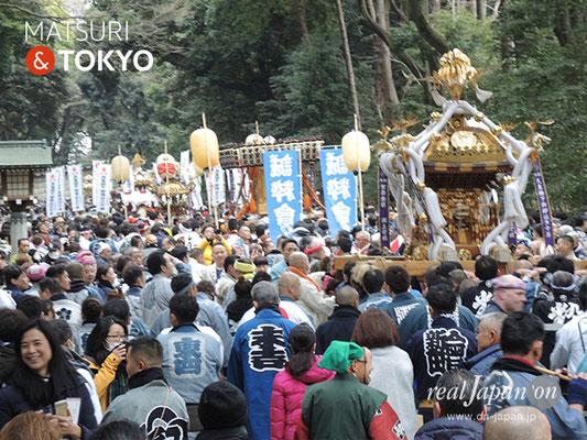〈建国祭 2019.2.11〉明治神宮参道 ©real Japan'on : kks19-029