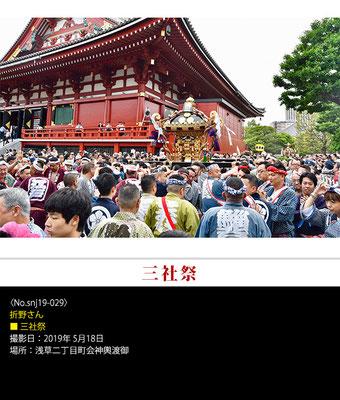 折野さん:三社祭 ,2019年5月18日,浅草二丁目