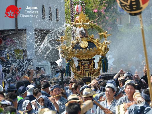 〈八重垣神社祇園祭〉神輿連合渡御:上出羽区 @2018.08.05 YEGK18_029