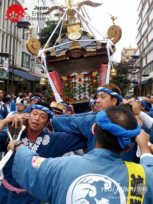 2017年 横浜開港祭 みこしコラボレーション「湘南連合神輿保存會」YH17_020