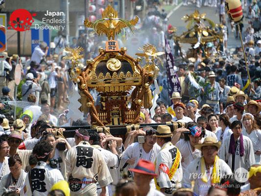 〈八重垣神社祇園祭〉神輿連合渡御:田町区 @2018.08.05 YEGK18_024