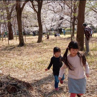 〈s20-123〉ryoo8189さん:家族でお花見行きたかったなー。