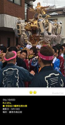 れこさん:世田谷八幡神社例大祭, 2016年9月18日,豪徳寺