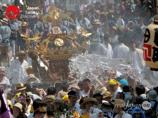 〈八重垣神社祇園祭〉神輿連合渡御:田町区 @2018.08.05 YEGK18_026