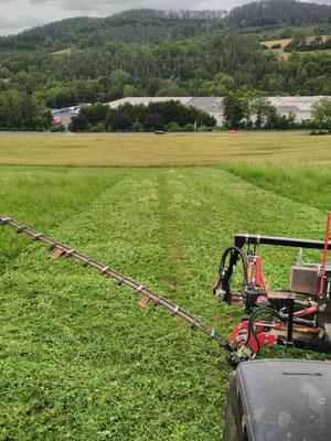 Insektenschonendes mähen mit Technik von BB-Umwelttechnik. Quelle: privat