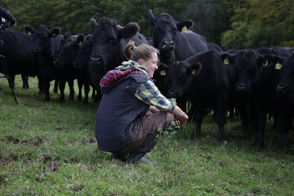 Besuch bei den Rindern auf der Weide. Quelle: Kulturfabrik e.V. medienWERK, Eschwege