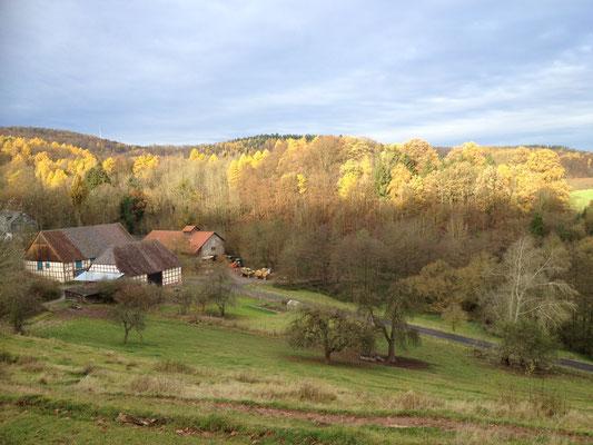 Gut Fahrenbach im Herbst. Quelle: Gut Fahrenbach