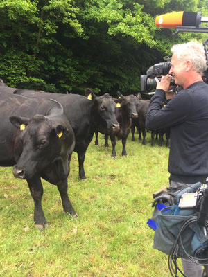 ZDF-Dreharbeiten auf Gut Fahrenbach. Quelle: privat