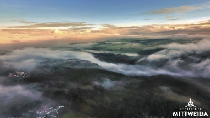 Nebelschwaden über dem Schweizer Wald (Elfema links)