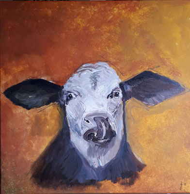 Kuh, 50 x 50, Acryl und Graphit auf Leinwand