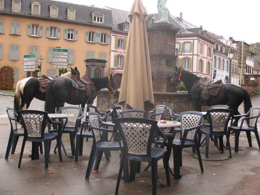 les cavaliers sont au bistrot...