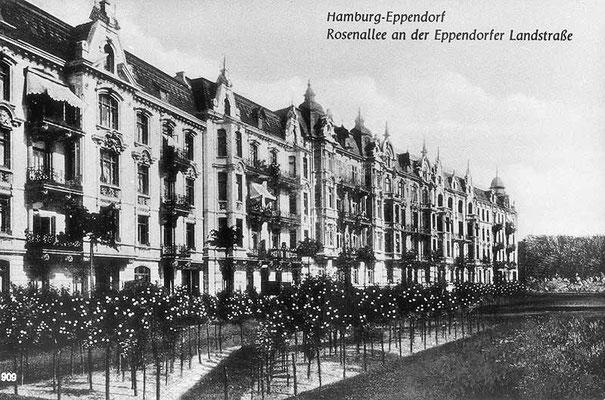 Eppendorfer Landstraße Rosenallee