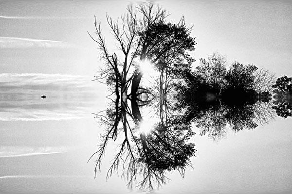 gespiegelter Sunrise am Fermasee