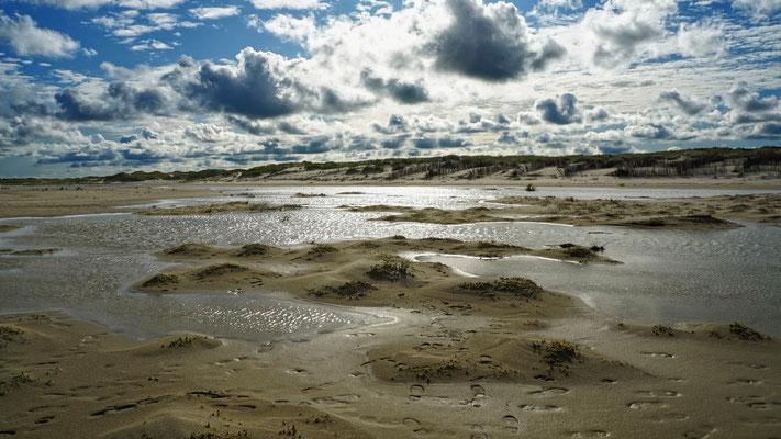 Oase Norderney