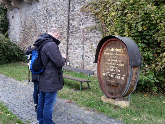 Vor der Niederburg