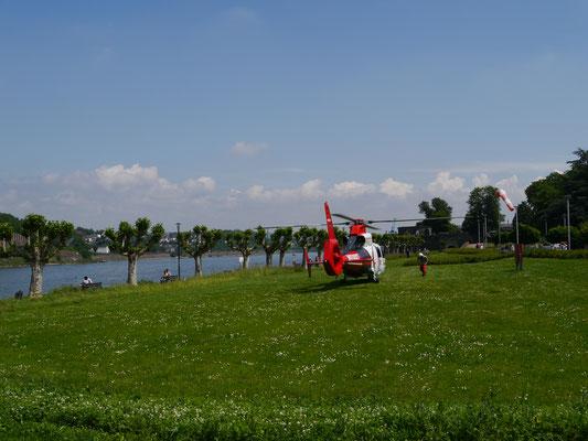 Hubschrauber auf Rheinwiese...