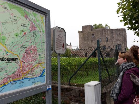 Vor dem Übersichtsplan Rüdesheim