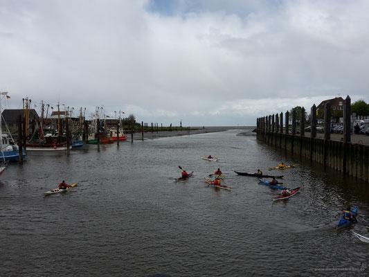Kanuten im Fischerhafen