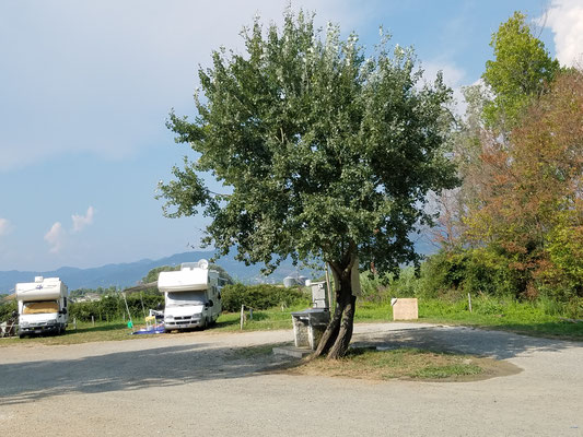 """Unter dem Baum in der Mitte die """"Ver- und Entsorgung"""""""