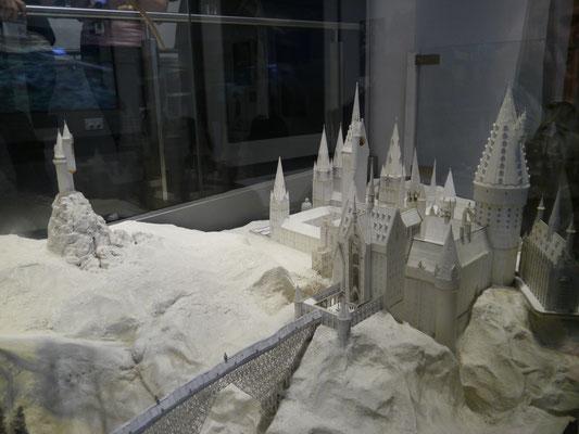 Schloss mit Landschaft und Eulerei