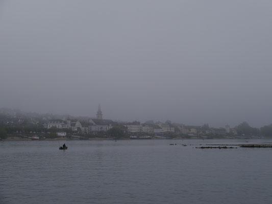 """... auf """"Vater Rhein"""" im Nebel"""