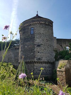 Burg Andernach mit Wohnturm